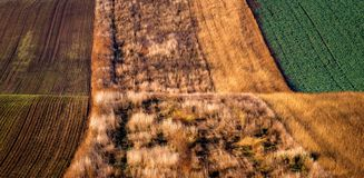 Amazing stripe patterns on waved fields of South Moravia, green and brown autumn colors. Stock Image