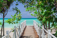 Amazing , stunning view of wooden  old bridge leading to the beach through tropical beautiful garden. Natural gorgeous amazing view of wooden bridge leading to Royalty Free Stock Photo