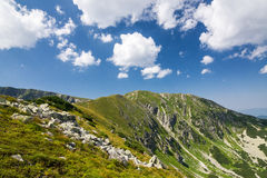 Amazing summer mountains Royalty Free Stock Images