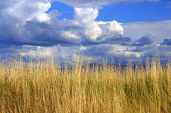Amazing summer skies. Dramatic darkened rainy sky against summer lit by the setting sun dry grass.Picture taken on July 12, 2014, Rhodopes mountain , Plovdiv royalty free stock photo