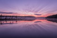 Amazing sunrise on the forest lake. Royalty Free Stock Images