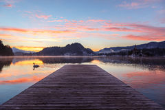 Amazing sunrise at the lake Bled in winter Stock Images