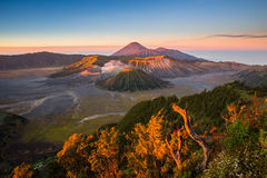 Amazing sunrise in Mount Bromo. Sunrise at Mount Bromo volcano, the magnificent view of Mt. Bromo located in Bromo Tengger Semeru National Park, East Java Royalty Free Stock Image