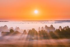 Amazing Sunrise Over Misty Landscape. Scenic View Of Foggy Morning royalty free stock photography