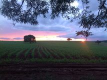 Amazing sunset in Brazil Stock Photo