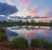 Amazing sunset clouds over Suru Suursoo bog Royalty Free Stock Photos
