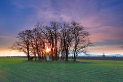 Amazing sunset on field Royalty Free Stock Photos