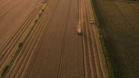 Amazing sunset footage of Combine Harvester harvesting wheat fields in UK. Aerial 4K footage shot in August. Farmers work the field in Yorkshire, UK at the end stock video footage
