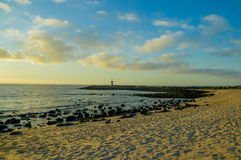 Amazing sunset galapagos beach with sealions and Royalty Free Stock Image