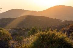 Sunset landscape of Sithonia peninsula, Chalkidiki, Central Macedonia, Greece. Amazing sunset landscape of Sithonia peninsula, Chalkidiki, Central Macedonia royalty free stock photography