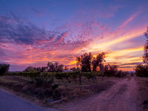 Amazing sunset over countryside landscape. In Canino, Italy Royalty Free Stock Photos