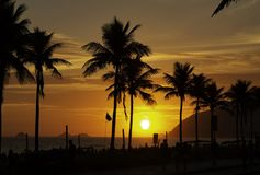 Amazing sunset with palms silhouettes over Ipanema beach in Rio de Janeiro. stock images