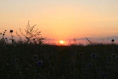 Amazing sunset Royalty Free Stock Photos