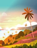 Amazing Sunset On Seaside, Tropical Landscape Summer Beach With Palm Tree Exotic Resort Poster. Flat Vector Illustration Stock Image