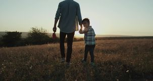 Amazing sunset small three years boy holding hands of his dad and walking through the sun , beautiful view. stock video footage