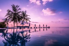 Pool and cafe on tropical Maldives island - nature travel background stock photography