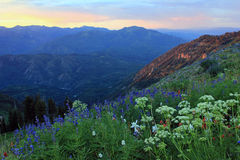 Amazing sunset in the Wasatch Mountains. Stock Photography