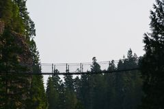 Elk falls provincial park Campbell River. Amazing suspension bridge in Elk Falls provincial park Campbell River Vancouver island stock photography