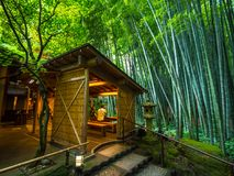 Amazing Tea house in a Japanese Bamboo Forest - TOKYO, JAPAN - JUNE 17, 2018