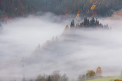 Amazing thick fog in the Carpathian Mountains. Royalty Free Stock Image
