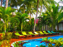 Amazing top view on swimming pool at tropical hotel near ocean Royalty Free Stock Image