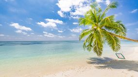 Amazing tropical beach banner. Palm tree with swing, summer day, tropical landscape. Vacation and holiday beach concept stock image