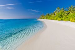 Maldives paradise beach. Perfect tropical island. Beautiful palm trees and tropical beach. Moody blue sky and blue lagoon. Amazing tropical beach. Exotic scene stock image