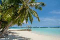 Amazing tropical beach landscape with ocean and palm trees at the tropical island Stock Image