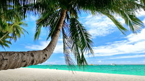 Amazing tropical beach landscape with palm tree. S, white sand and turquoise ocean waves. Philippines travel landscapes and destinations stock video