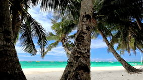Amazing tropical beach landscape with palm tree. S, white sand and turquoise ocean waves. Philippines travel landscapes and destinations stock video footage