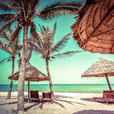 Amazing tropical beach with palm trees, chairs and umbrella. On sand. Travel nature landscape in vintage style. Vietnam Royalty Free Stock Photo