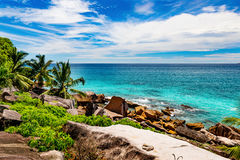 Amazing tropical beach. Photo of a tropical beach. The Seychelles Royalty Free Stock Image
