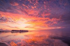 Amazing tropical beach sunrise or sunset landscape, luxury water villas and mirror reflection and colorful sky. Sunset or sunrise on tropical beach. Palm trees Royalty Free Stock Images