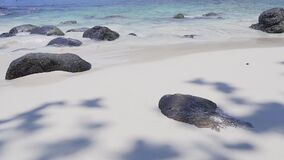 Amazing tropical white sand beach with black rocks and clear blue waves lapping
