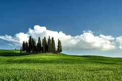 Amazing Tuscany landscape. Green grass, blue sky, cypress trees stock photos