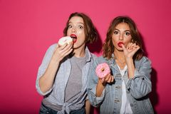 Amazing two women friends eating donuts. Picture of amazing two women friends eating donuts isolated over pink background. Looking camera Stock Images
