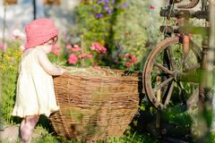 A cute little girl sits on a hay in a basket in the garden stock image