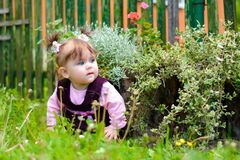 An amazing Ukrainian little girl sits at the flower. Amazing summer demonstrates this beauty Stock Photography