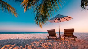 Amazing vacation and holiday and travel destination background. Sunset beach scene with deck chairs and palm trees Stock Image