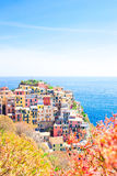 Amazing view of the beautiful village of Manarola from above in Cinque Terre reserve. Liguria region of Italy. Royalty Free Stock Photos