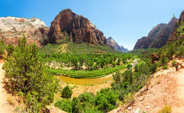 Amazing view of canyon at Zion National Park Royalty Free Stock Photo