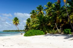 Amazing view of Caribbean beach with white sand and beautiful ex Royalty Free Stock Images