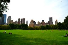 Central Park in the summer royalty free stock photo