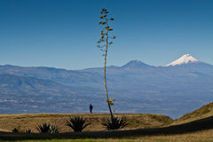 Amazing view of Cotopaxi volcano, Ecuador Stock Photo