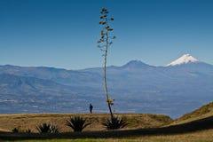 Amazing view of Cotopaxi volcano, Ecuador Stock Photo