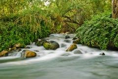 Amazing view of Dan River Israel Royalty Free Stock Image