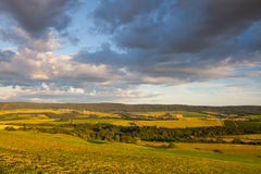 Amazing view from golf course to the valley. At sunset Royalty Free Stock Images