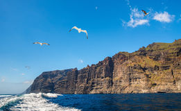 Amazing view of high cliffs from the boat. Location: Los Gigante. S, Tenerife, Canary Islands. Artistic picture. Beauty world Stock Images