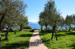 Amazing view of Lake Garda from the hills of the park Parco Pubblico Tomelleri in Sirmione town, Italy Royalty Free Stock Image