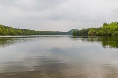 Beautiful view of a lake with many trees and a gray sky and reflection in the water. Amazing view of a lake with many trees and a gray sky and sharp reflection stock images